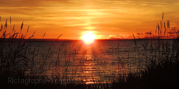 Good Morning Sun Shine