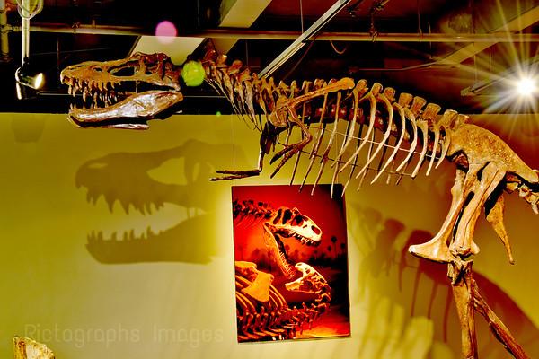 Dinosaur, Thunder Bay, Ontario, Canada,  Museum,