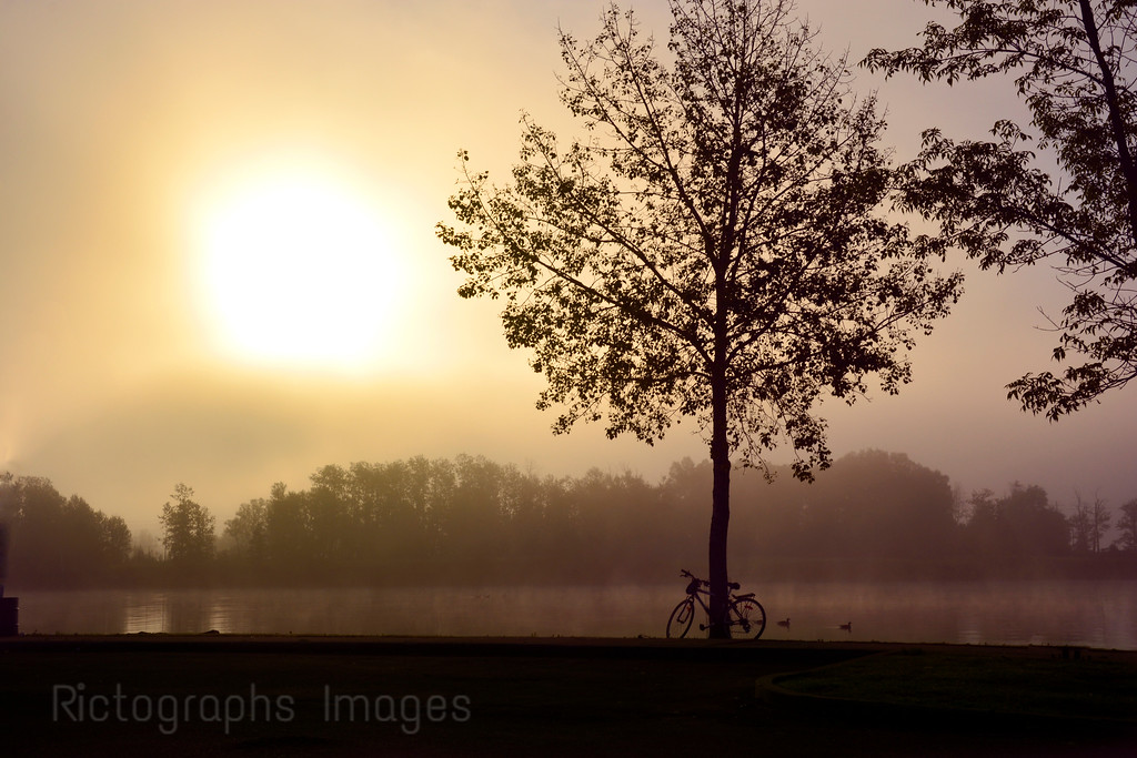 Bike Siloette, At Sunrise