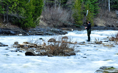 Fisherman Fishing the MacIntyre River