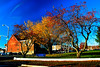 Autumn In A City Park, Rictographs Images