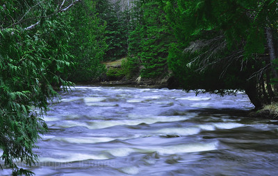 The MacIntyre River Spring 2011
