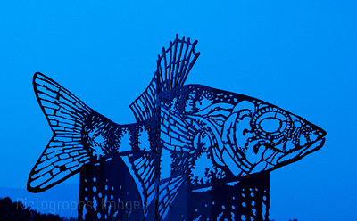 Fish Art, Pickerel Sculpture,  Thunder Bay, Ontario, Canada