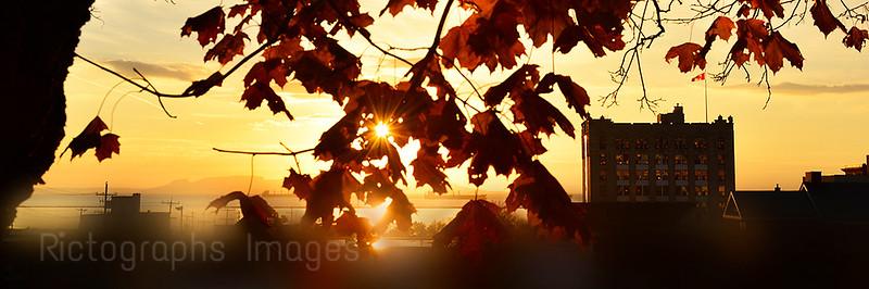 Good Autumn Morning Fall 2016