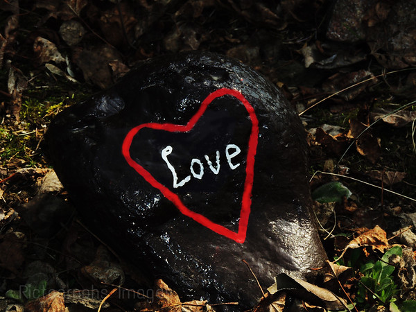 A Painted Rock From The Hope & Memory Garden