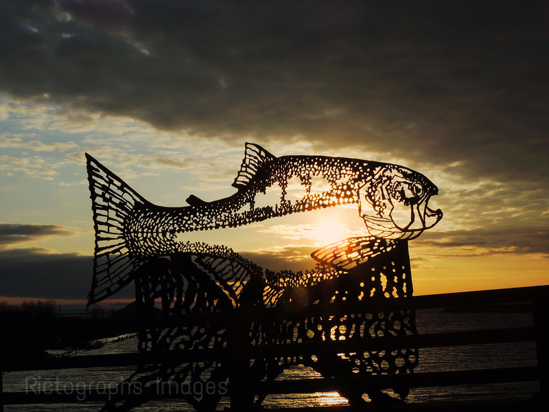 The Fish SculptureOn The McKeller Island Bridge
