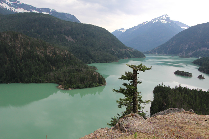 Ross lake from the Highway 20 overlook.