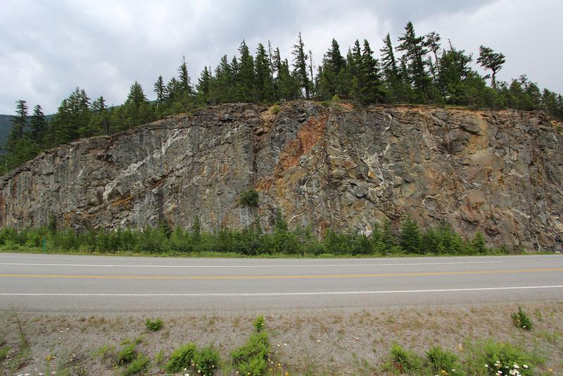 Veins of feldspar quartz.  Geology is cool.