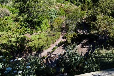 Tilden Park Botanic Garden