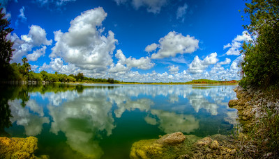 Everglades Reflections 2014