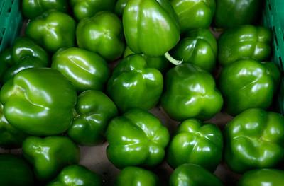 Paprika, grønn (© Ragnar Våga Pedersen)
