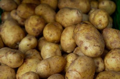Potet, poteter (© Ragnar Våga Pedersen)