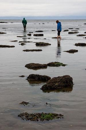Tongue Point Intertidal 2011