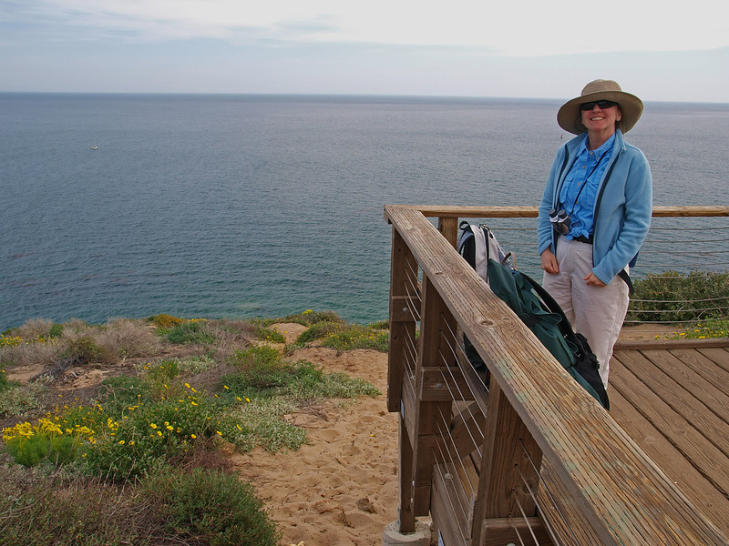The observation deck on top of Point Dume can be reached in a 10 minute walk from Westward Beach. It's a great place to watch for Gray Whales from January to April.