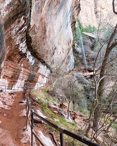 The path under the Emerald Pools, Zion NP.
