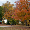 Tower Grove Park 103011-2