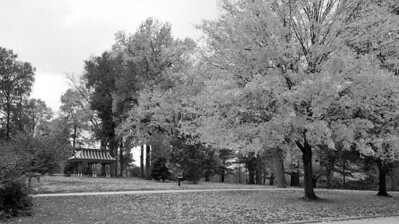 Tower Grove Park October 30 2011