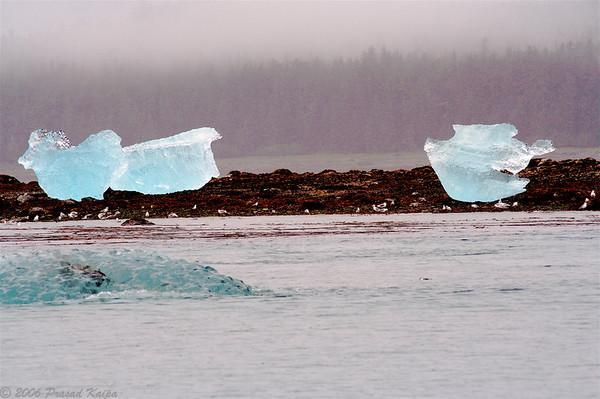 Tracy Arms Fjords, Sawyer Glacier, Juneau, Alaska