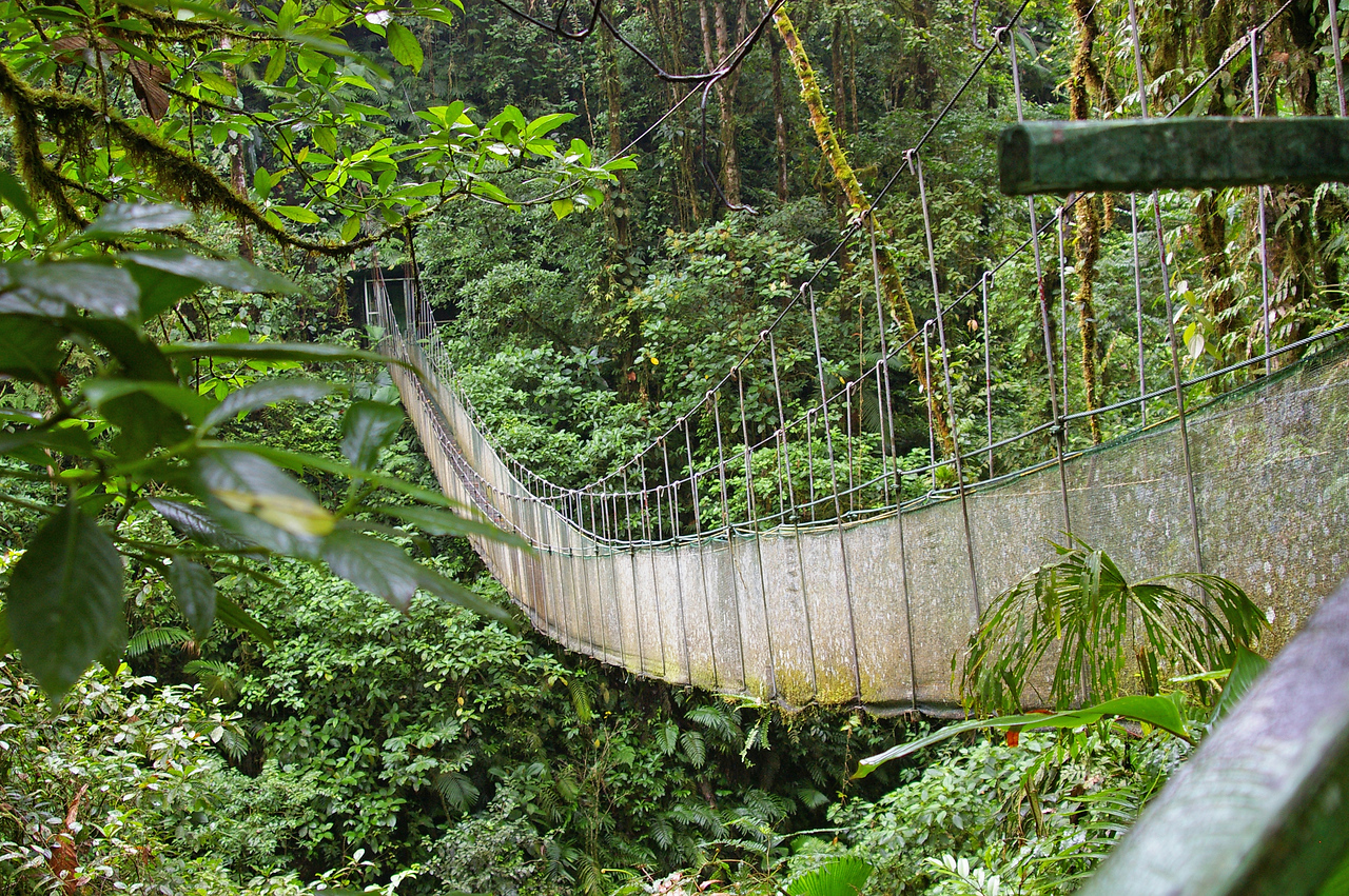An old suspended bridge