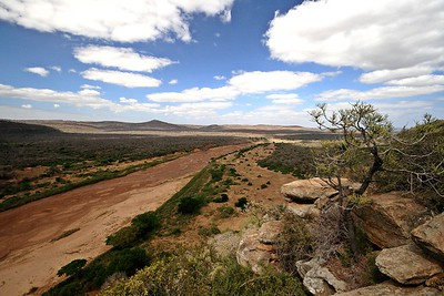 Hluhluwe national park - South Africa
