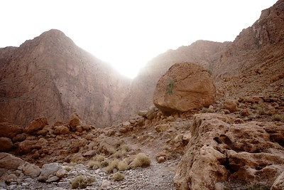 Todra Gorge - Morocco