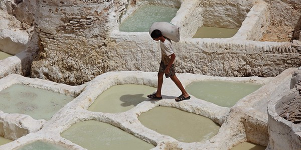 Tanneries in Fez - Morocco