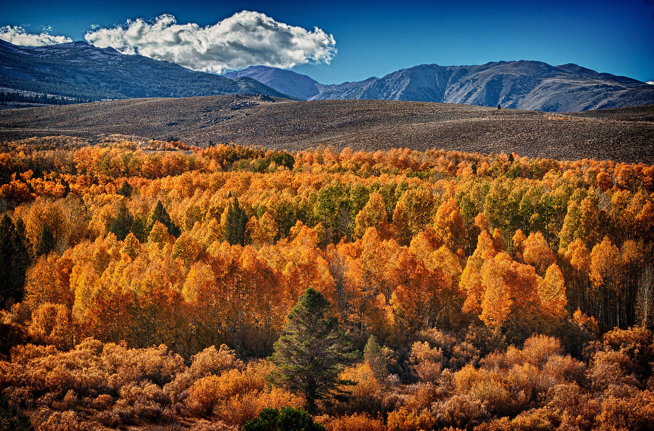 Eastern Sierras 395 hwy Fall season