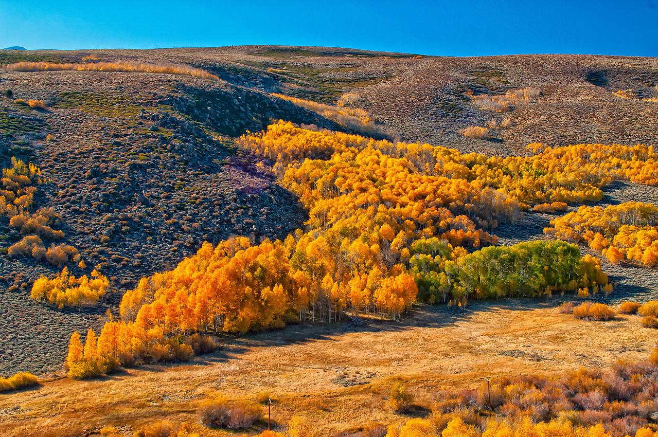 Eastern Sierras 395 hwy Fall season4