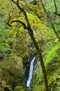 Fall at Cataract Falls