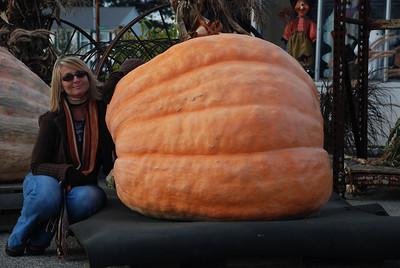 Now that's a BIG pumpkin!