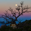 Cape Royal Moonset