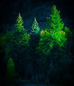 Beaver Creek 10-08-08 043
