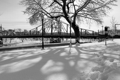 Snowy Scene, Black n White, Easton, PA 2/4/2014