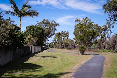 Eastern Boundary, Pine Ridge Conservation Park; Runaway Bay, Gold Coast, Queensland, Australia; 25 October 2012. Photos by Des Thureson