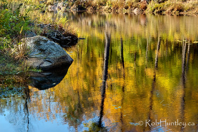 Beaver Lodge with Beaver Pond Reflections, Gatineau Park, Quebec.  © Rob Huntley 2011