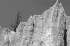 A dead Douglas Fir high up on the Hoodoos cliff near Fairmont Hotsprings, B.C.