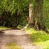 Swinton Park Estates, England