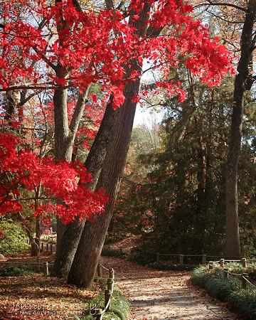 Maymont Park in Autumn