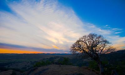 Ida Clayton Sunset #2- Knights Valley, CA