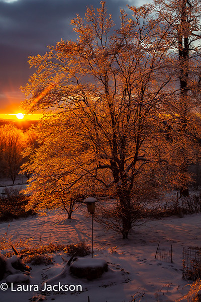 Icy Glow