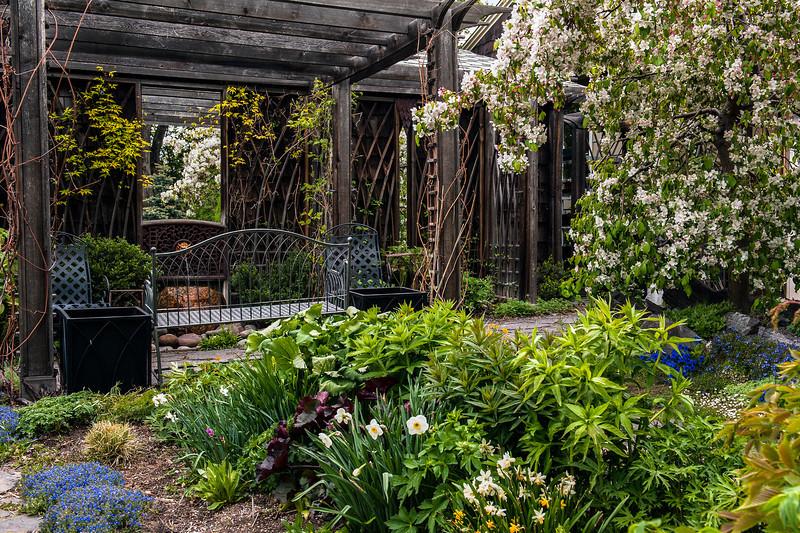 Spring in Runde Wood Garden, Calgary, Alberta