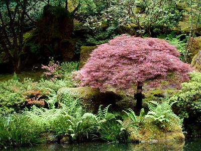 Japanese Gardens - Portland, Oregon