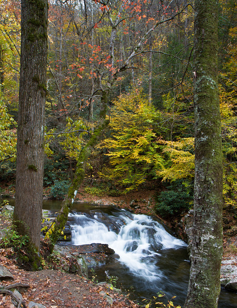 Small water cascade along Laurel Creek Road in Great Smokey Mountains National Park