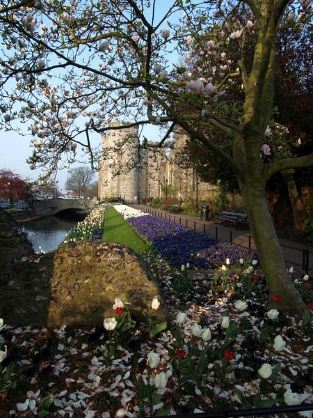 Westgate Gardens Canterbury 24