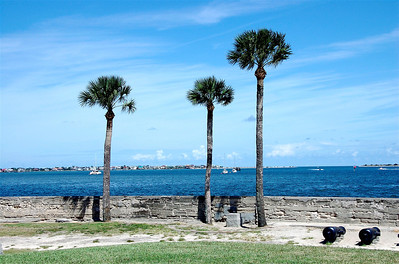 Palm Trees on Matanzas River in St. Augustine, FL. © Nora Kramer Photography.