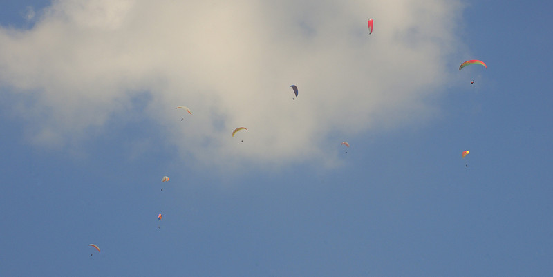 Paragliders - Taken while Paragliding in Pohkara, Nepal