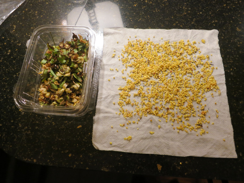 Seed shelling keep seeds wet/moist