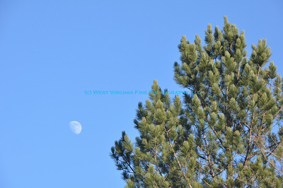 Afternoon Moon 001