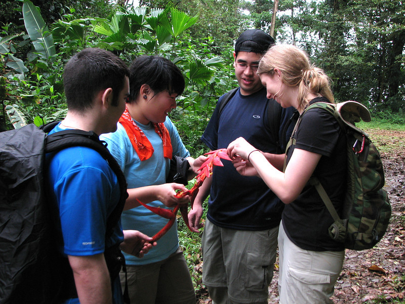 Chris, Eunice, Dan and Kate examine a Heliconia inflorescence.