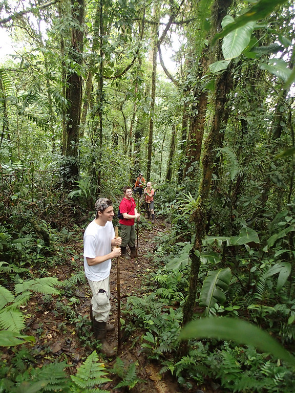Orientation hike in the forest at Alberto Manuel Brenes Biological Reserve
